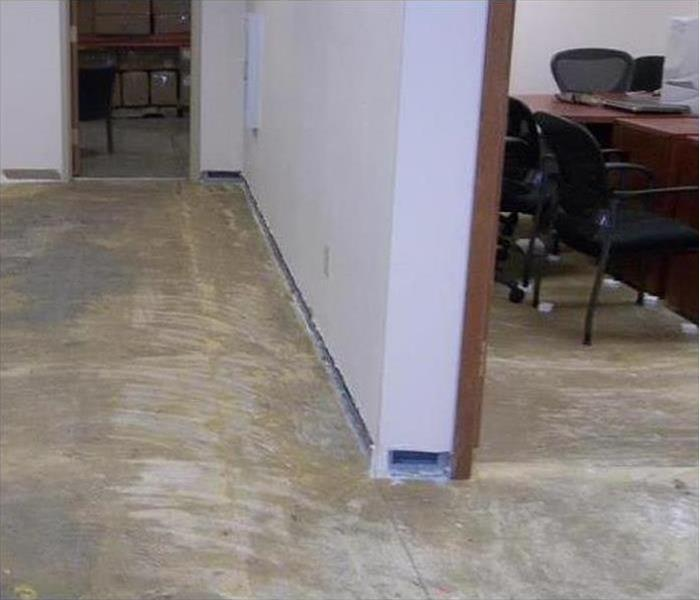 Water and Rugs Removed